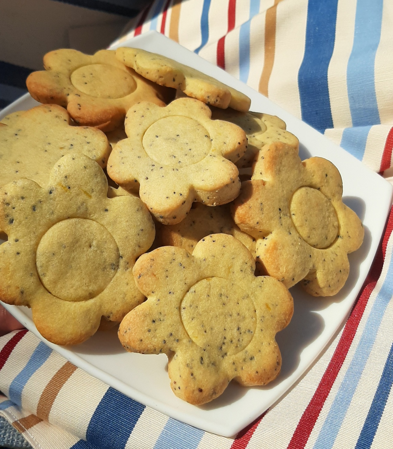 Lemon and Poppy seedcookies